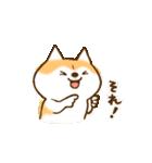 柴ちん3 柴犬と散歩(個別スタンプ:06)