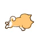 柴ちん3 柴犬と散歩(個別スタンプ:23)