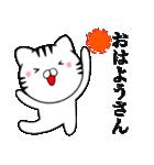 主婦が作ったデカ文字 関西弁ネコ2(個別スタンプ:01)