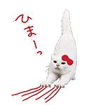あなごちゃん×ハローキティ(個別スタンプ:10)