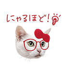 あなごちゃん×ハローキティ(個別スタンプ:38)