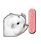 ハムスター☆だいふく ver.2(個別スタンプ:2)