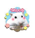 ハムスター☆だいふく ver.2(個別スタンプ:4)