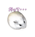ハムスター☆だいふく ver.2(個別スタンプ:18)