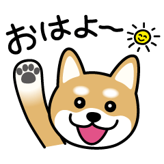 [LINEスタンプ] Cute! 柴犬スタンプ (1)