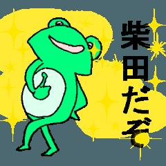カエルの柴田さん