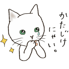 にゃんてことない猫の日常会話