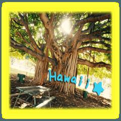 ハワイの写真スタンプ