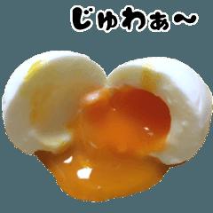 動く写真!リアルな卵の気持ち