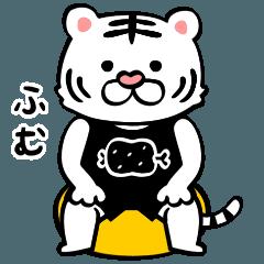 動く!筋トレする白いトラ