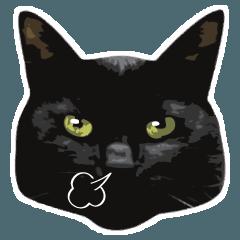 黒猫クロ兵衛