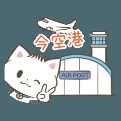 海外旅行・連休向けモヒカンニャンコ!