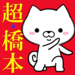 超★橋本なイヌ
