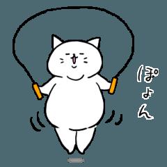 デブ猫のシロとハチワレ2