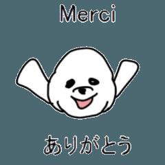 フランス語×日本語