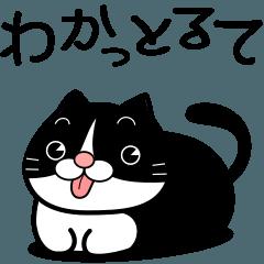 [LINEスタンプ] 名古屋のハチワレ
