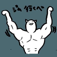 筋肉質な猫