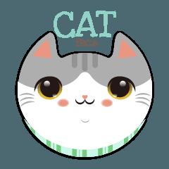 I love CAT Face