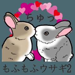 もふもふウサギ 2