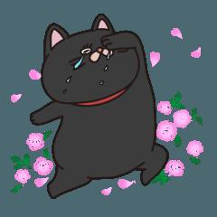 たのしい黒猫 英語と日本語