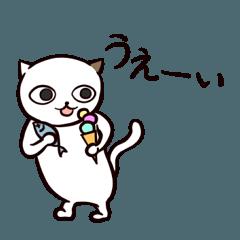 ひねくれ猫のサヨさん