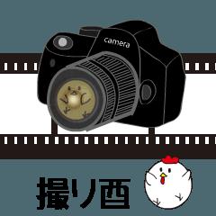 [LINEスタンプ] 撮り酉(トリは写真部) (1)