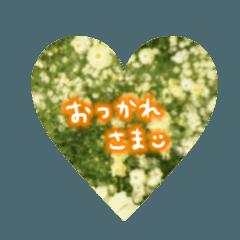 お花の写真と手書き文字