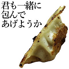 実写!餃子(40枚)