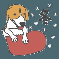 ビーグル犬のビーです。(冬)