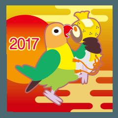 NEW YEAR 2017〜丸い目のボタンインコ