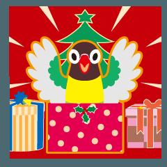 クリスマスと年末 〜丸い目のボタンインコ