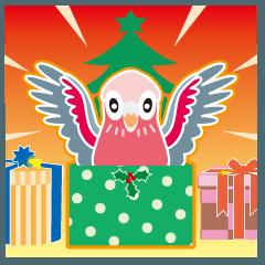 クリスマスと年末 〜モモイロインコ