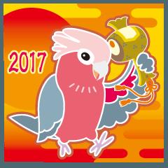 NEW YEAR 2017〜可愛らしい モモイロインコ