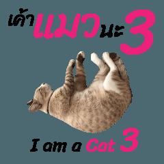 ニャーニャー 私は猫です 3