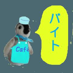 [LINEスタンプ] 羊毛フェルトのペンペンシリーズ 学生編