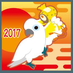 NEW YEAR 2017 〜ダンス上手・キバタン