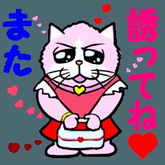 """女子力高め猫 """"リリー"""""""