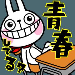 ウサギ魂6 ~学校.受験.勉強バージョン~