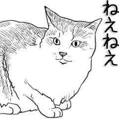 絵から写真へ変化する猫