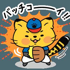 [LINEスタンプ] 野球猫チータン★楽しい毎日