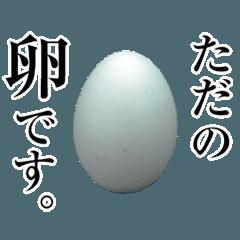 ただの卵です