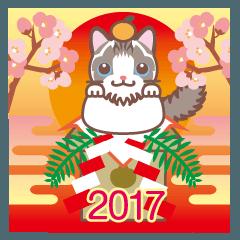 NEW YEAR 2017〜ふわふわのラグドール