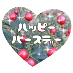 植物と共に「おめでとう」を伝えるスタンプ
