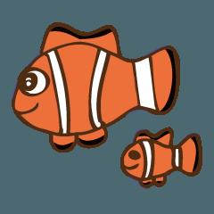 魚と海の仲間たち