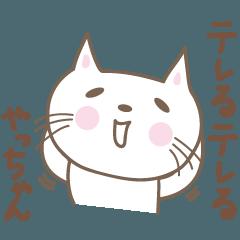 やっちゃんネコ cat for Yacchan