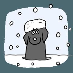 黒ラブたん 少し冬