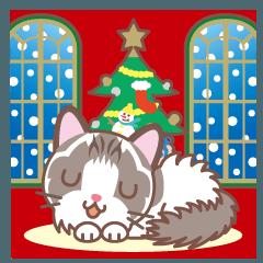 クリスマスと年末 〜ふわふわのラグドール