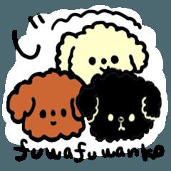 チワプーとプードル(フワフワンコ)