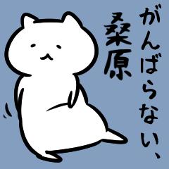 がんばらない桑原さんスタンプ(白猫)