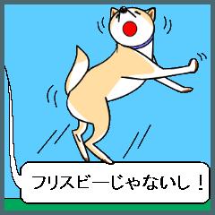 [丸型アイコン]〇〇ではないの?-2